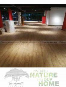 sàn gỗ rainforest ir86