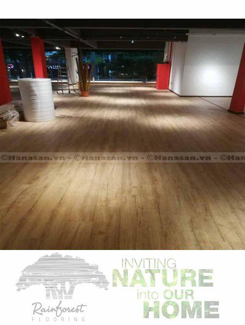 sàn gỗ rain forest ir 86-2