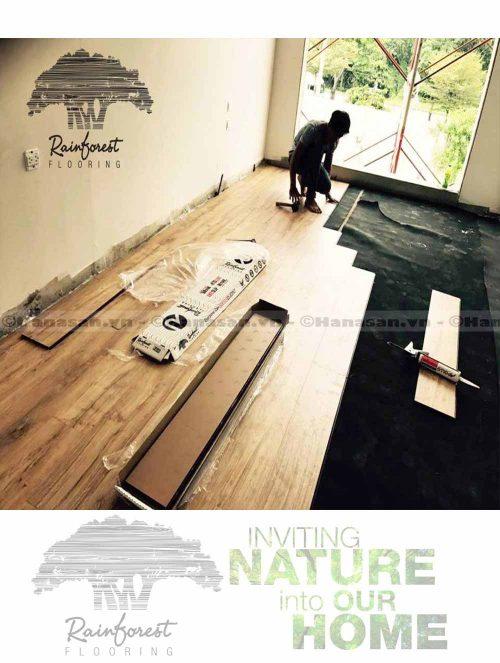sàn gỗ rain forest ir 86-4