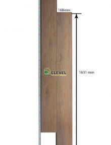 Sàn gỗ clevle 868-5L