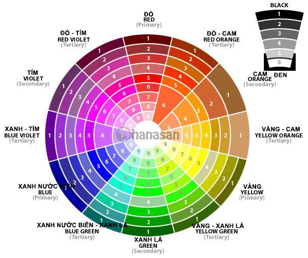 vòng tròn màu sắc hanasan